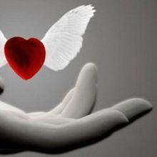 """""""Nous consommons tous notre amour et nous passons à autres choses"""""""