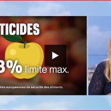 Bourde au journal de France 2 : encore une pomme de discorde