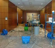 Water Damage Repair by Professional Firms