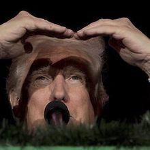 LE POINT - Pourquoi Trump dérange