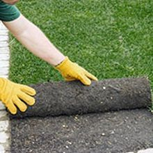 Important steps to a lawn makeover