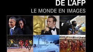 2012, le monde en images