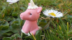 photo minute#7 La licorne perdue♥