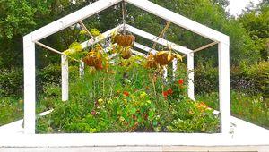 Botanical zoom sur la permaculture