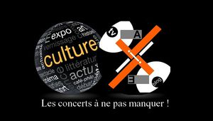 Les concerts à ne pas manquer en Novembre !