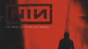 NIN Beside You in Time (DVD)
