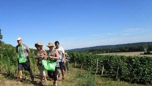 La Chartre : l'Hôtel de France invite à découvrir le Jasnières et les vins de la vallée du Loir