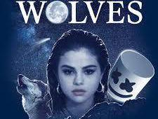 Selena Gomez, Mashmello - Wolves (Jayden Harris Remix)