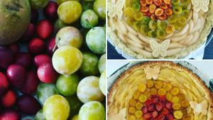 Tarte fruits de saison