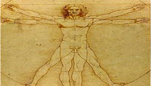AM1 – Study of the human proportions in body growth