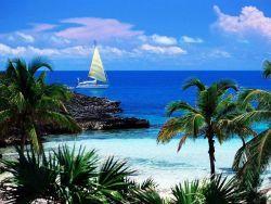 Le Isole Bahamas sempre più verdi