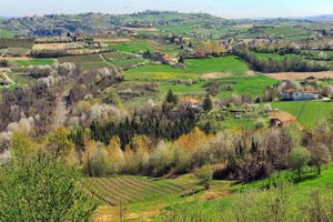 Week-end di Slow Shopping nelle Langhe