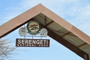 Au Pays de Simba : Serengeti