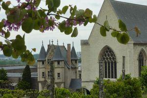 Angers et ses environs (suite 4)