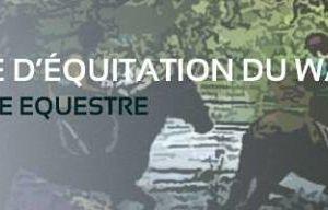 Journée nutrition équine spéciale pâturage à Strasbourg