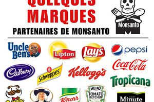 Comprendre Monsanto
