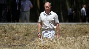 Poutine : La Russie veut devenir le plus grand exportateur mondial de produits non génétiquement modifiés.