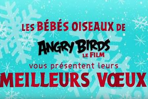 Angry Birds - Meilleurs Voeux