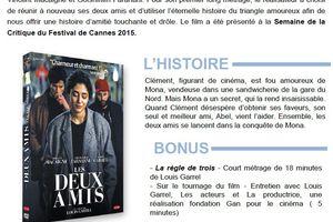 LES DEUX AMIS - Un film de Louis Garrel, en DVD le 3 février 2016 chez Ad Vitam