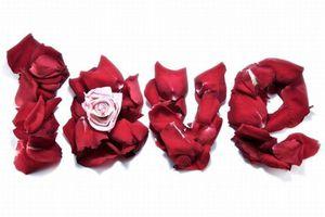La Saint-Valentin approchant, n'hésitez pas à nous poser toutes vos questions