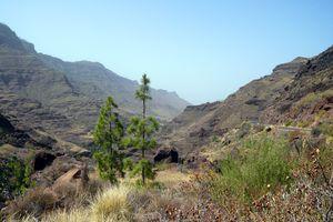Gran Canaria, intérieur et Roque Nublo