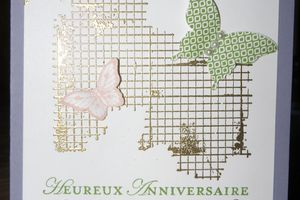 Carte Papillon et grillage