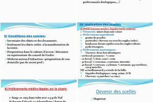 ETAT DES LIEUX - LEVÉE DE CORPS - SCELLES 2