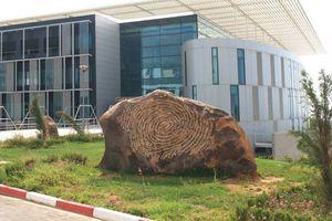 المعهد الوطني للأدلة الجنائية وعلم الاجرام :  بوشاوي- الجزائر العاصمة