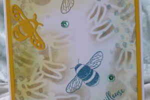 Jolies libellules
