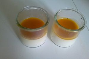 Panna cotta coulis mangue et abricot, thermomix, agar agar