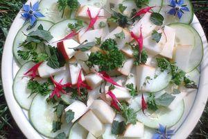 Salade de concombre aux fleurs