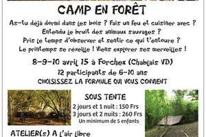 Camp en forêt (sous tente)