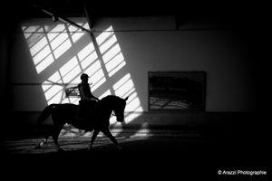 """2n Rencontres de l'équitation de tradition française : jours 1 partie 5 le """"off"""" repas midi du 15 octobre."""