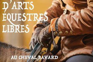 Festival d'Arts Équestres Libres, l'idée d'un collectif : regrouper les passionnés d'Equitation et du Cheval.