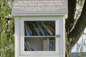 Je lis, tu lis, il lit, nous lisons, vous auriez pu lire, ils auraient du lire