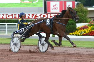 Quinté Vendredi soir à Vincennes : Orient Horse pour le coup de 4