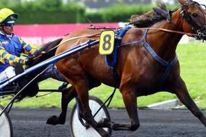 Quinté Mercredi à Enghien : This is It, confirmation attendue