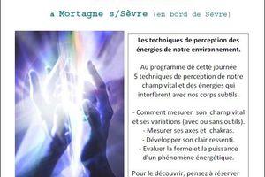 Détection sensible et énergies subtiles 6/06/2015