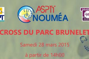 Cross du parc Brunelet