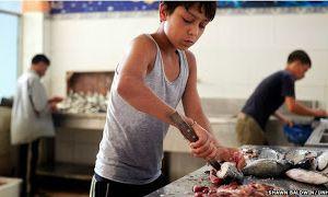 خانہ جنگی کی بھاری قیمت ادا کرتے شامی بچے