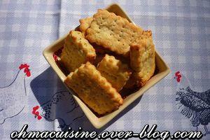 Crakers au parmesan et herbes de Provence