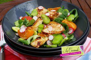 Salade de Poulet aux Abricots, Fêves et Sésame