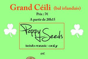 Grand Ceili du 18 avril à RIEC!!!!!