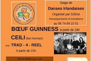 Vivement Samedi!! stages + repas irlandais + ceili