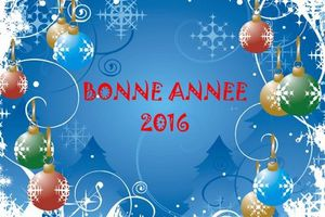 Meilleurs voeux 2016!!!