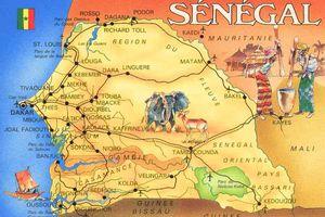 Questionnaire de Proust : si mon Sénégal était...