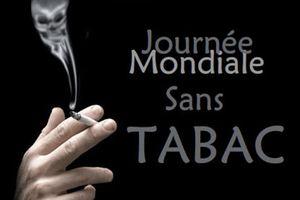 Ils ont testé la cigarette électronique pendant la journée mondiale sans tabac