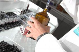 l'Afnor choisit le Bordelais Excell pour tester les e-liquides