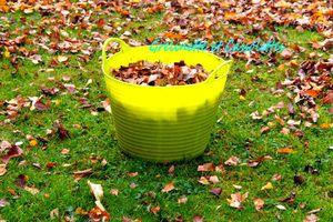 Recycler les feuilles au Jardin