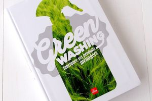 Green Washing, Fabriquer ses Produits Ménagers